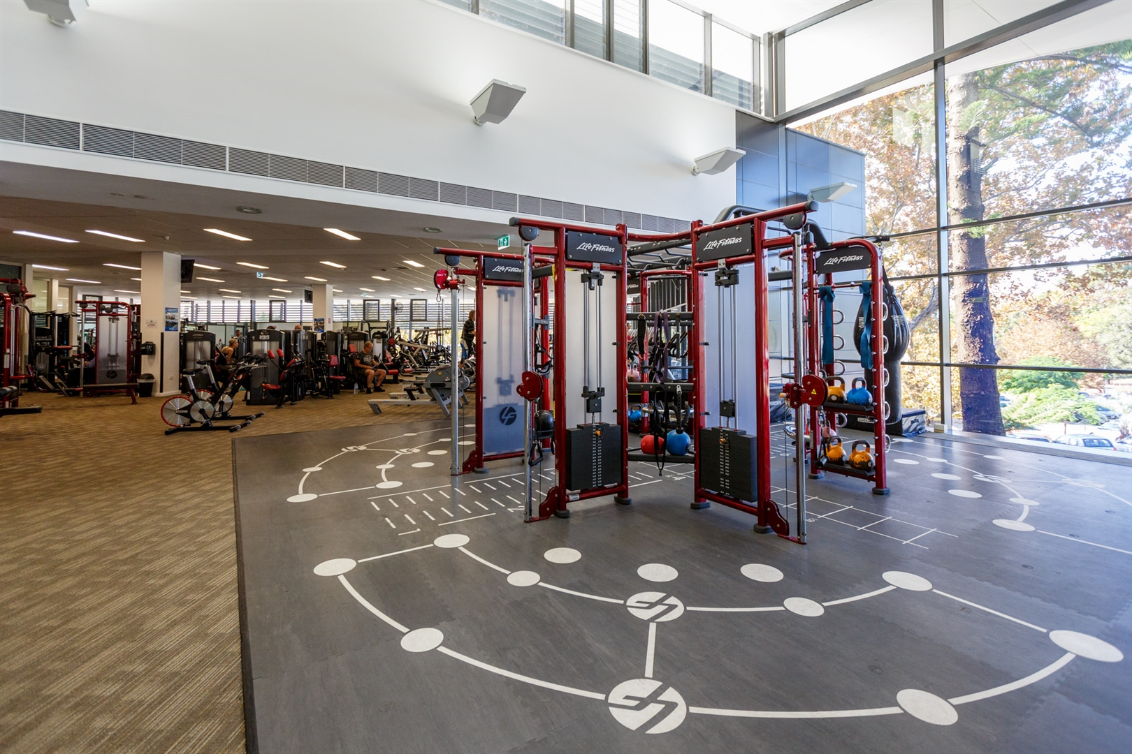 Functional training rig in Gym